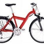 En el AVE con bicicleta
