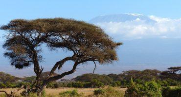 Si amas el golf y los lugares exóticos, Kenia es el país para tu próximo viaje