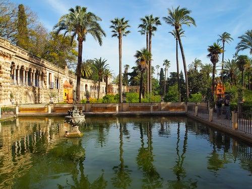 Alcazar. Sevilla