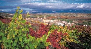 Fotografía, enoturismo y gastronomía: Viaje a La Rioja en otoño
