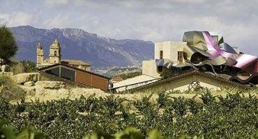 La ruta del vino: Rioja