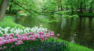Escapada primaveral a Holanda