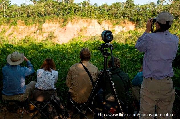 Actividades fotográficas en la Reserva Nacional de Tambopata