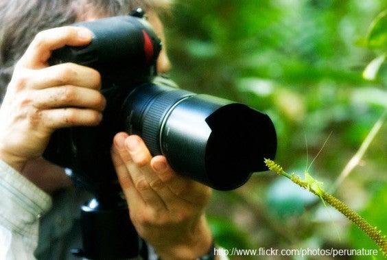 Tour fotográfico en Tambopata