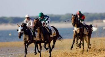 Déjate seducir por las carreras de caballos de Sanlúcar de Barrameda