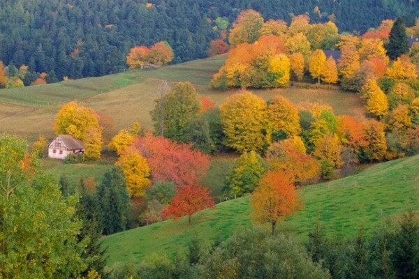 Alsazia autunno