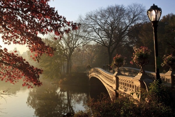 Central Park autunno a new york