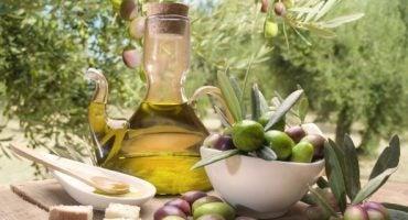 Ruta del aceite de oliva por Les Garrigues (Cataluña)