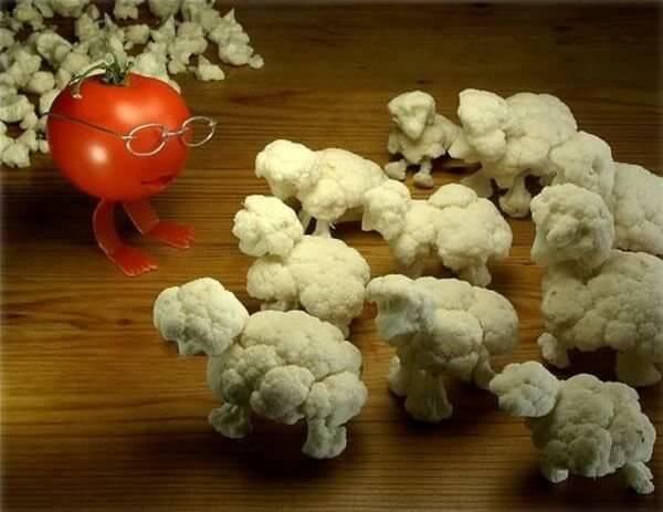 montaje fotográfico con coliflores que parecen ovejas