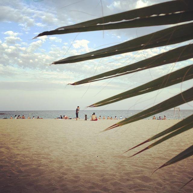 30 actividades que hacer si visitas Barcelona. Barceloneta