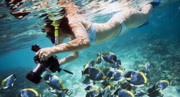 Las mejores playas para bucear y hacer snorkel en Cataluña