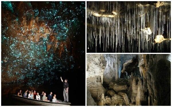 Waitomo cave 4