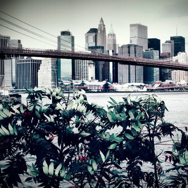 brooklyn bridge park nueva york