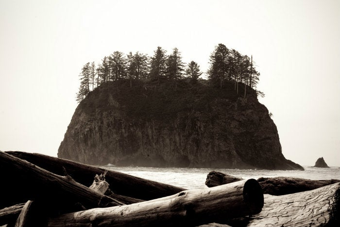olympic national park_