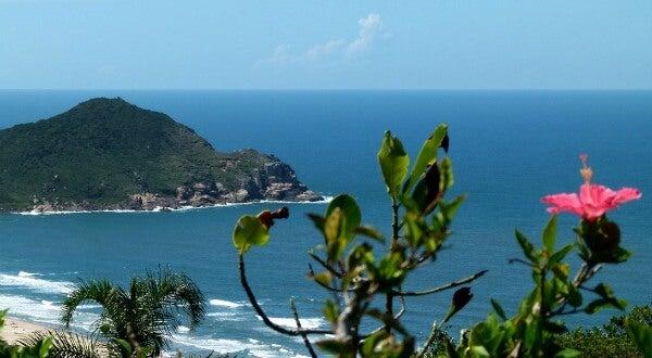 Bahía de Praia do Rosa, en Brasil