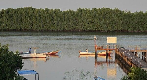 Bahia de Sine Saloum, Senegal