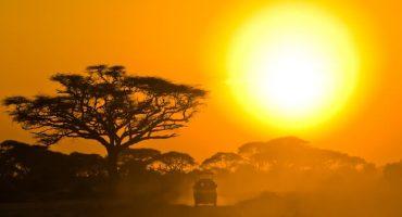 Conoce los 5 safaris más increíbles