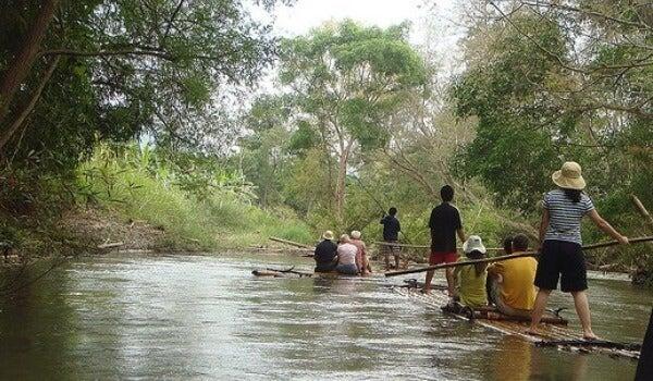 Barca de bambu