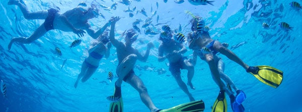 The Medes Islands snorkeling