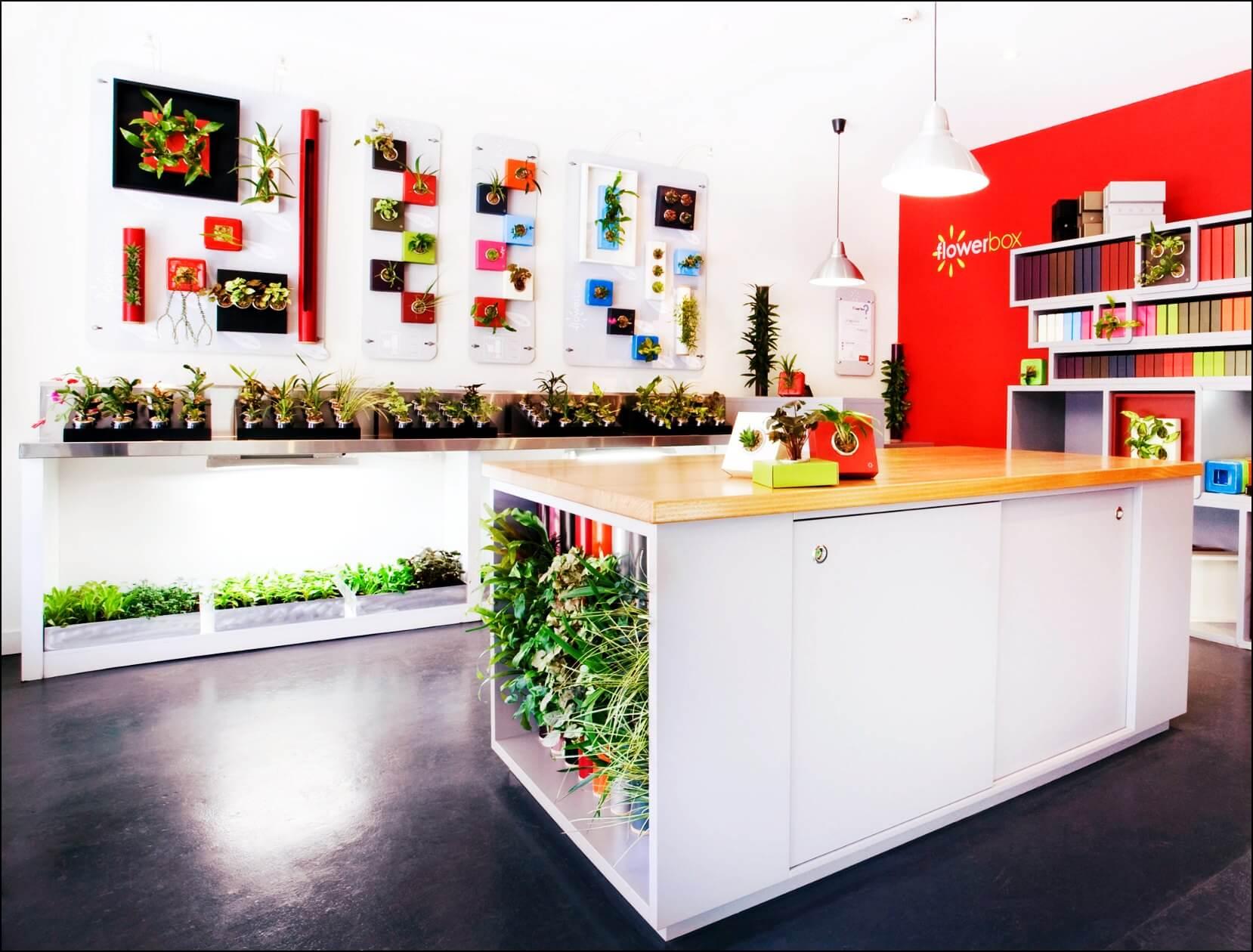 FlowerBox Gallery, Madrid