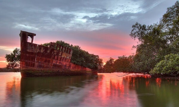 Ayrfield, Homebush Bay