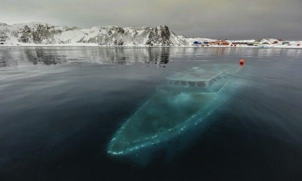 Sunken Yacht, Antartica