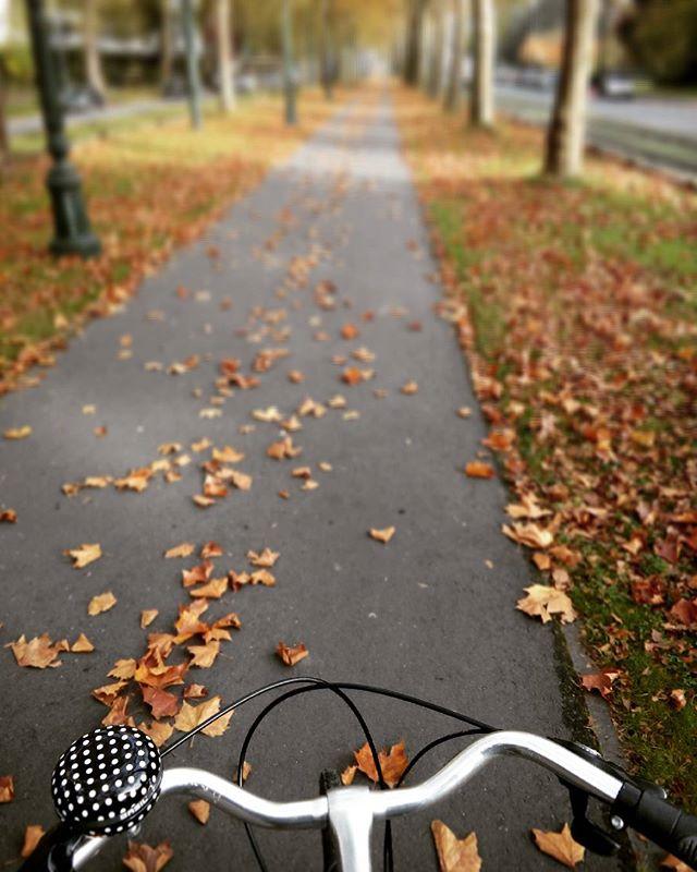 bruselas bici