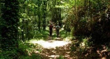 Las mejores rutas para hacer senderismo en España