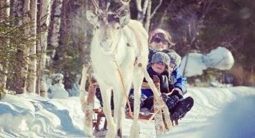 20 cosas que hacer en Rovaniemi, la ciudad de Papá Noel