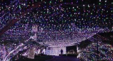 Record Guinness: La casa con más luces de Navidad, 502.165 bombillas