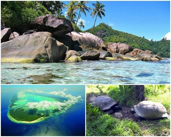 Aldabra collage
