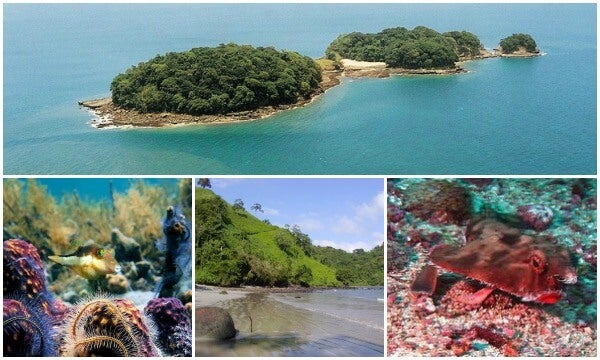 Isla de Cocos collage