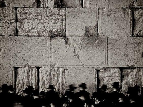 muro-del-pianto-di-Minamies-photo