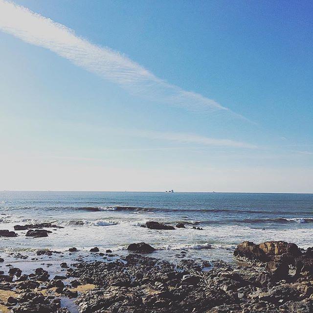 25 cosas que hacer en Oporto. Paseo Alegre