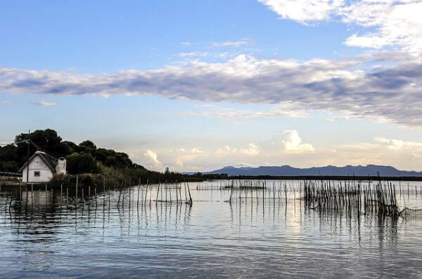 9 lugares que visitar en Valencia. parque natural de la albufera de valencia