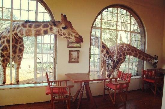 Giraffe Manor en Nairobi