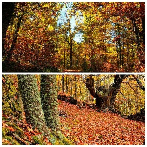 Vale de Ambroz durante o Outono
