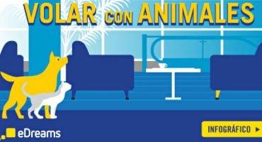Viajar con mascotas según la compañía aérea