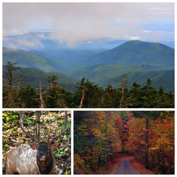 smoky mountains Collage