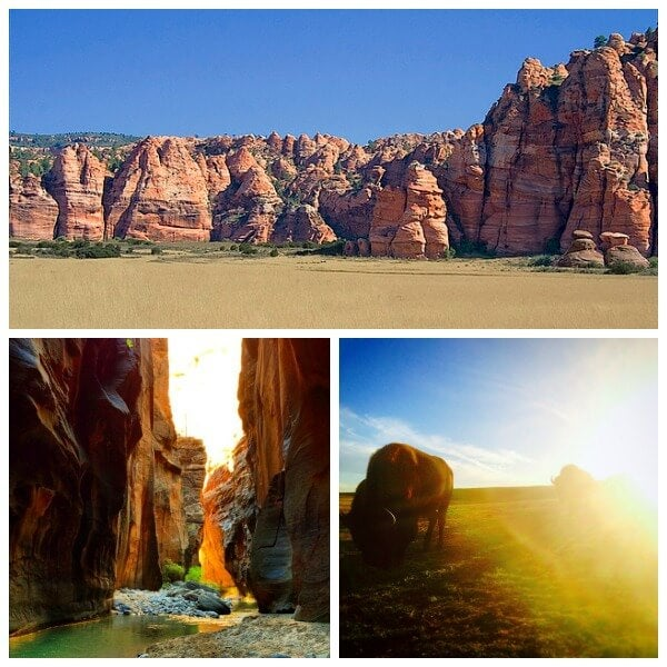 zion park Collage