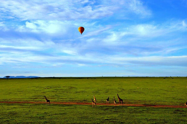 globo sobre jirafas en kenya