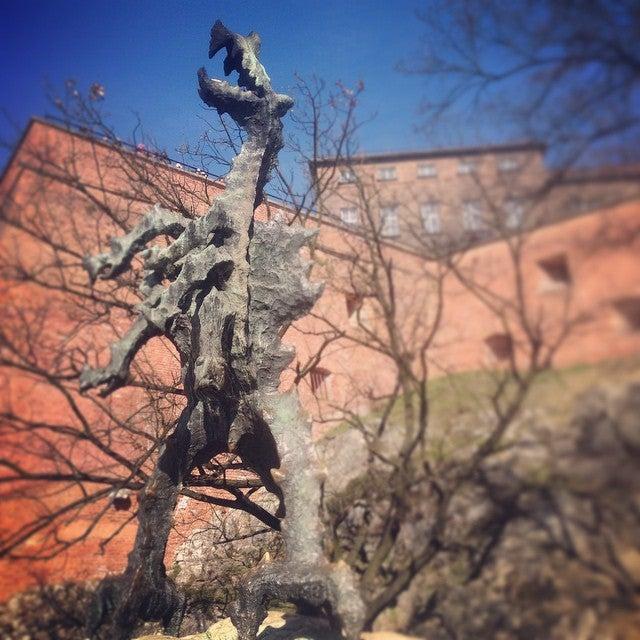 dragon de cracovia