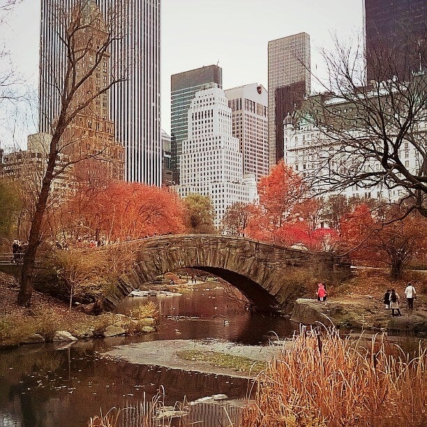 central park new york otono