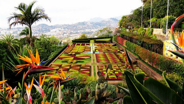jardines botanicos funchal