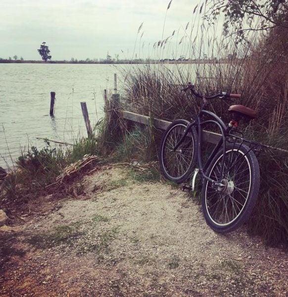 Paseos en bici en el Delta. Foto de @mfbec