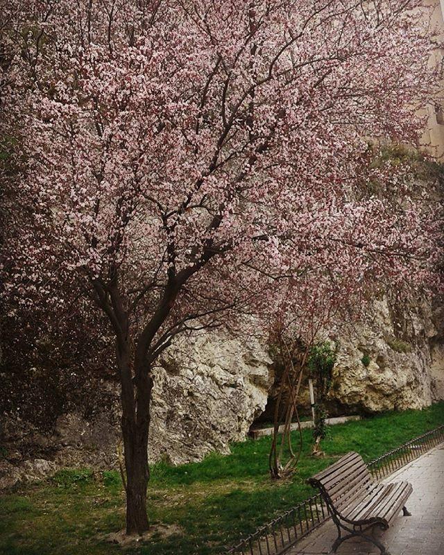 cuenca en primavera