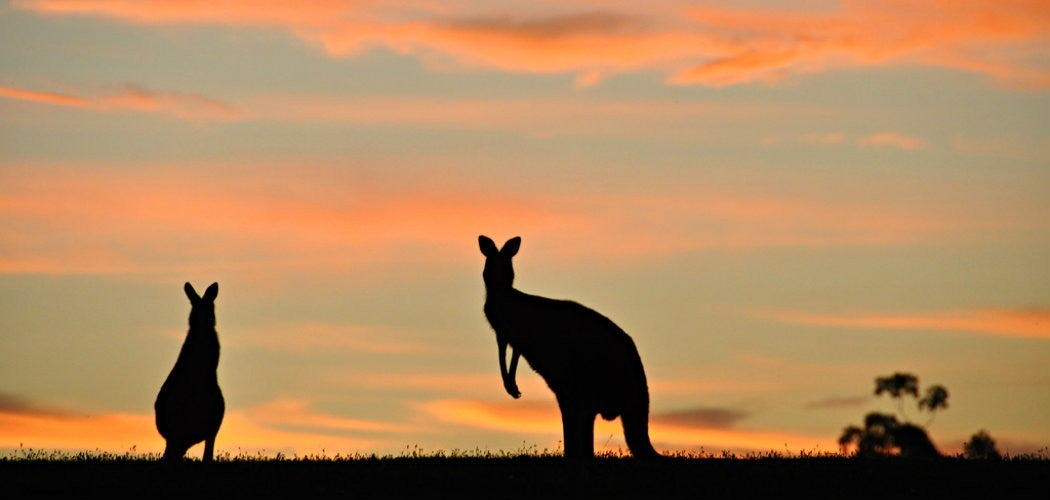 australia_1050x500