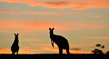 20 razones para viajar a Australia