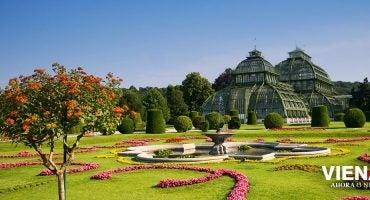 Gana un viaje a Viena, donde vive la primavera