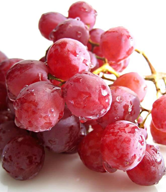 tratamiento de vinoterapia en La Rioja
